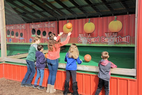 Barnyard Ball Throw at Rader Family Farms