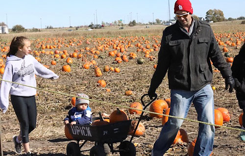 Rader Family Farms U Pick Pumpkin Patch
