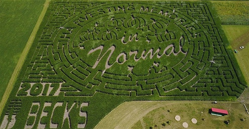 Rader Family Farms 2017 Corn Maze