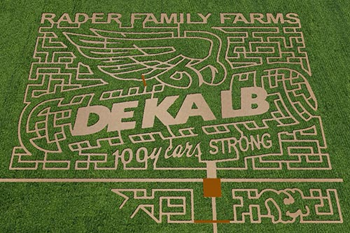 2012 Rader Family Farms Corn Maze