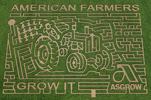 2013 Rader Family Farms Corn Maze